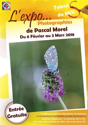 "Exposition de photographies ""Pascal Morel"""